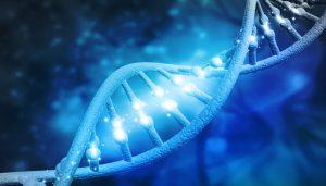 DNA-Strang-weltgrösste-genetische-studie