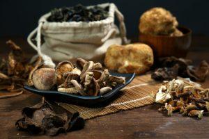 Pilze-entzündungshemmende-lebensmittel