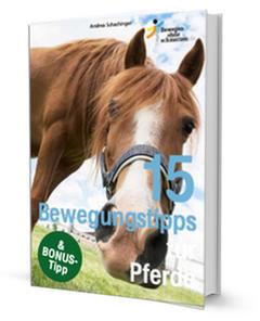 bewegungstipps-pferde