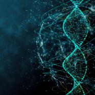 Durchbruch: Neue genetische Risikofaktoren für Arthrose gefunden